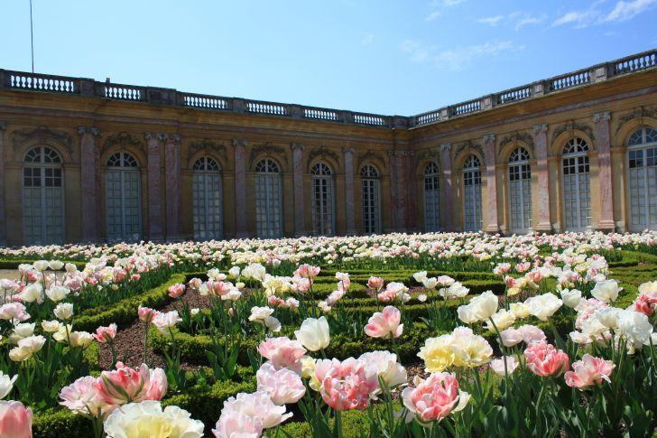 El trianon for Jardines eliseos